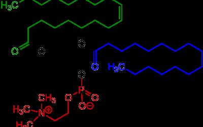 Emulsionanti e bilancio HLB